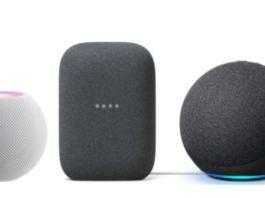 HomePod Mini, Amazon Echo, or Google Nest